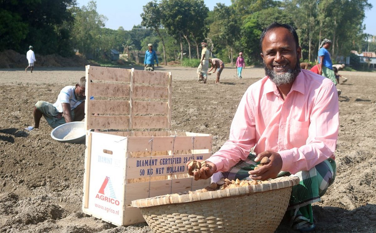Agrico seed potatoes head to Bangladesh