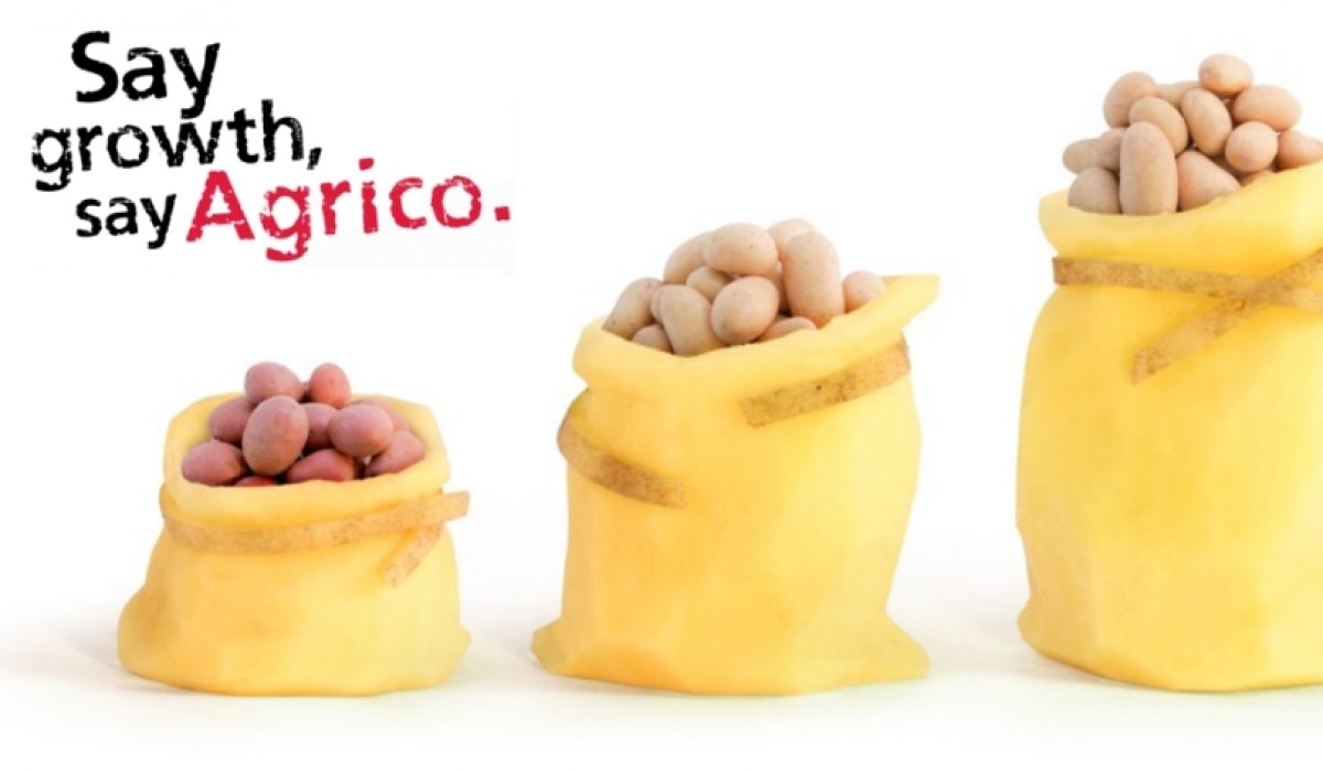 Agrico shows growth in potato varieties at Fruit Logistica 2017