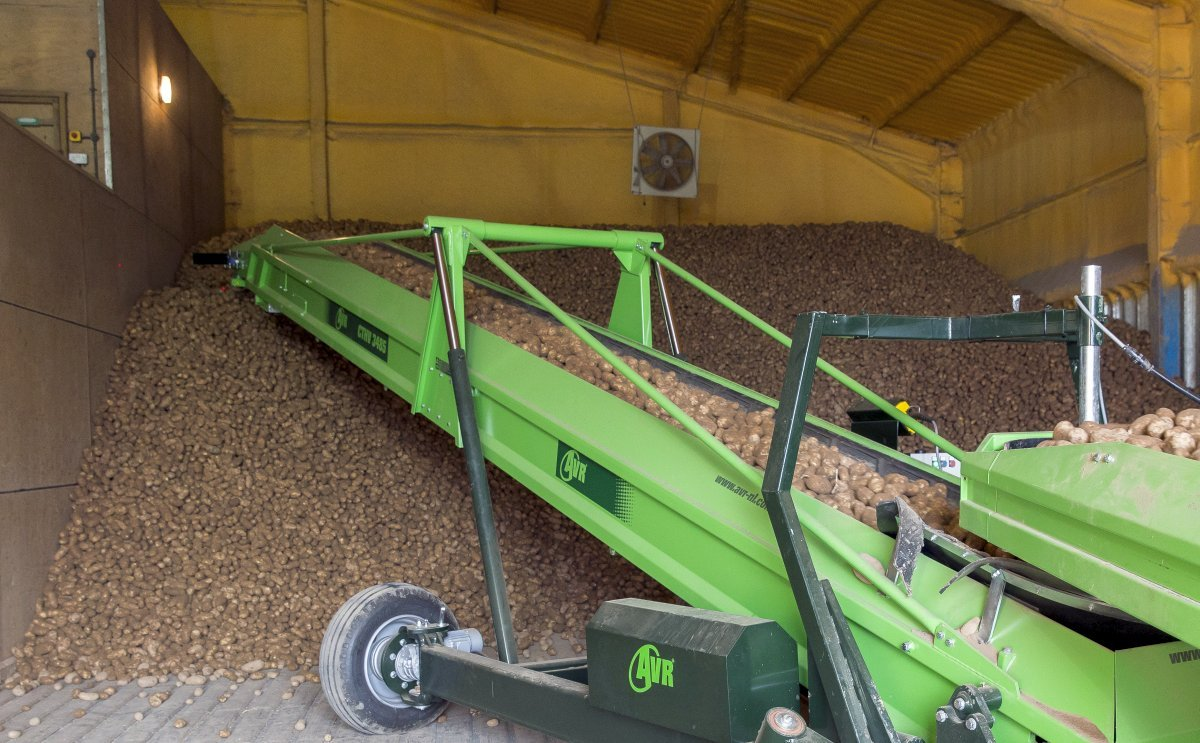 UK Potato Storage: regular checks vital this season for reducing risks