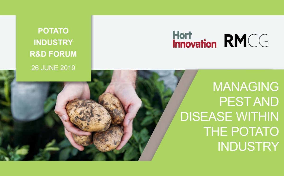 Potato growers to learn about managing pests and diseases at Potato Industry R&D Forum