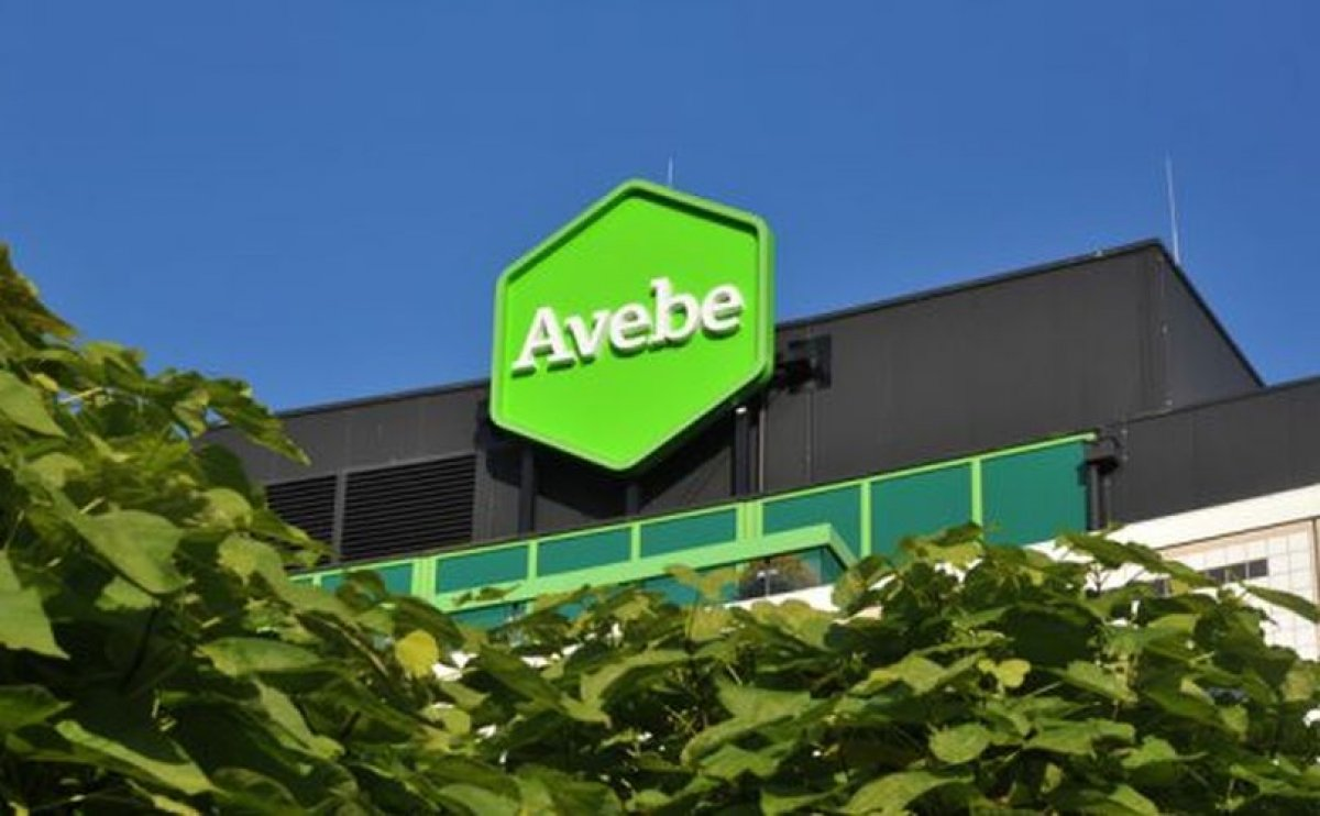 Potato Starch company Avebe achieved record performance price for season 2017/2018