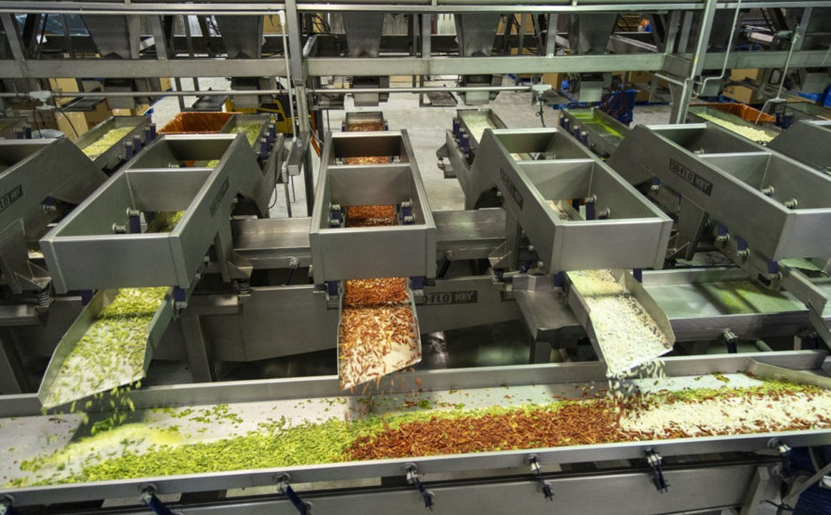 Key Technology shares Maintenance Tips for Vibratory Conveyors