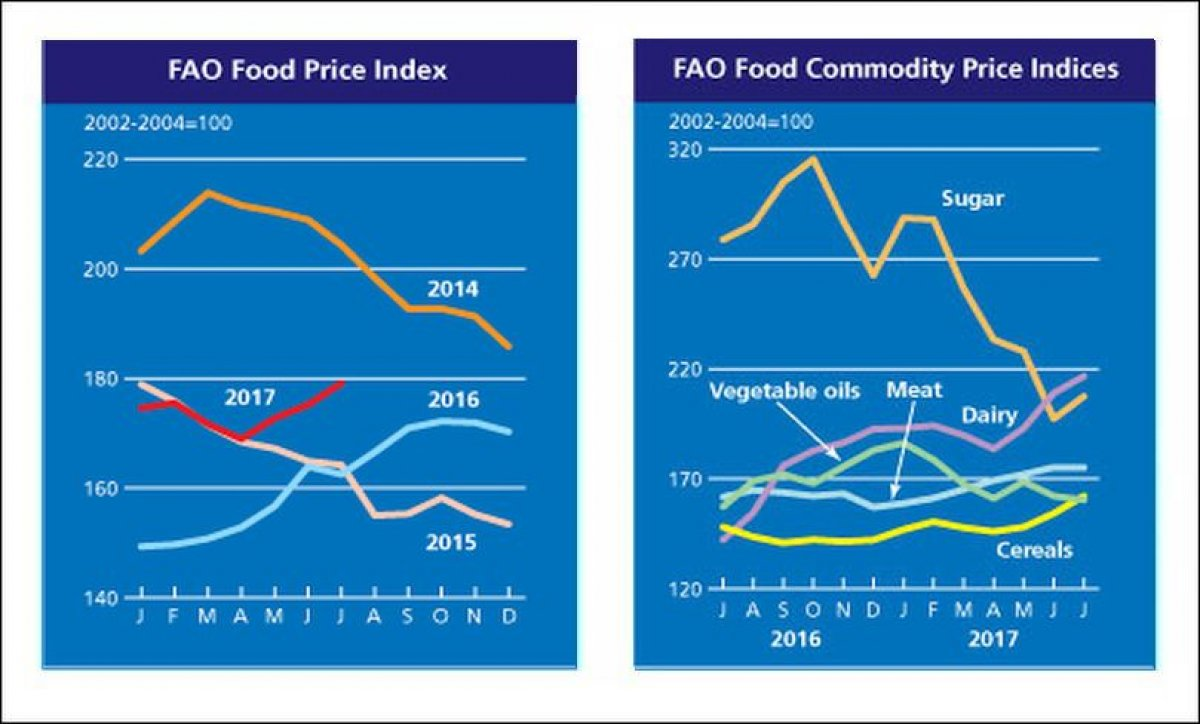 FAO Food Price Index up for the third month in a row