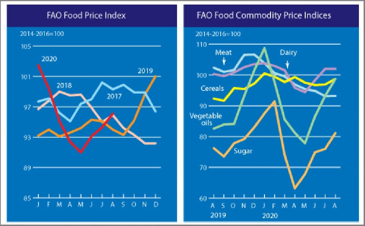 The FAO Food Price Index hits a six-month high