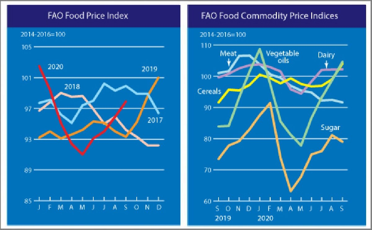 September marked the fourth consecutive monthly increase in the FAO Food Price Index