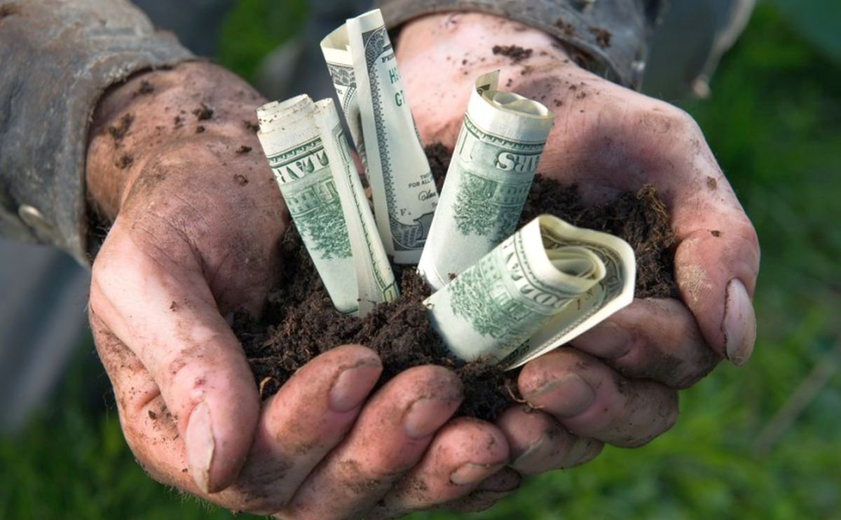 The National Potato Council Urges SBA to Include Ag Businesses in Disaster Loan Program