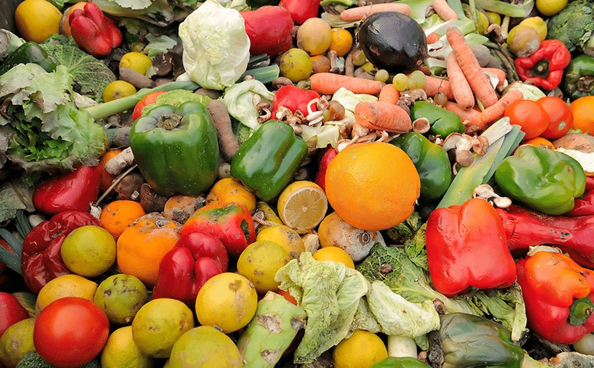Strong Roots Takes on the Global Food Waste Crisis One Pound at a Time