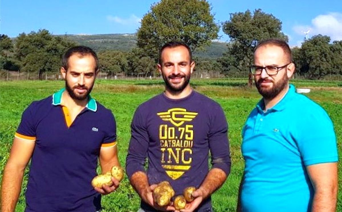 Sardinian mountain potatoes now served in chocolate