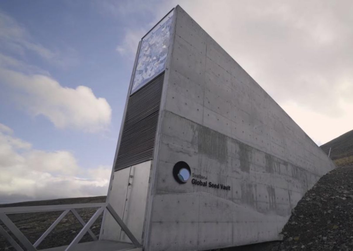 Doomsday? Svalbard Seed Vault flooded, threatened by Climate Change