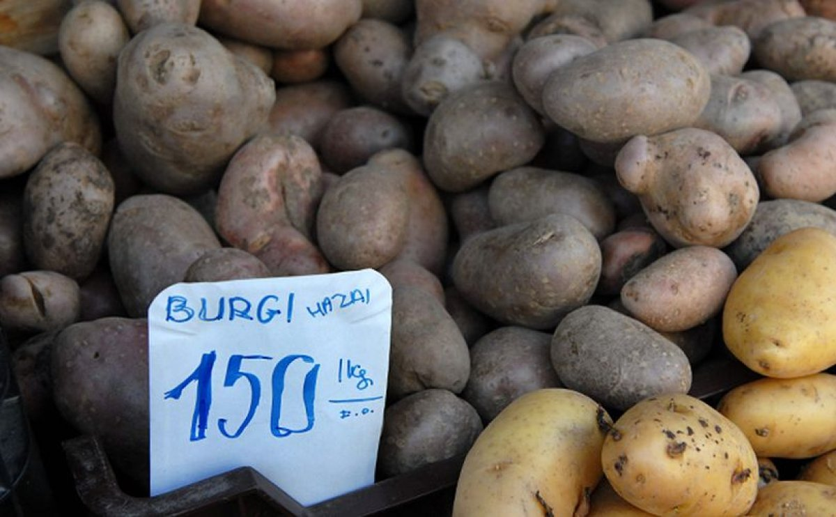 Hungarian Potato Growers Squeezed: Low Prices AND Low Yields