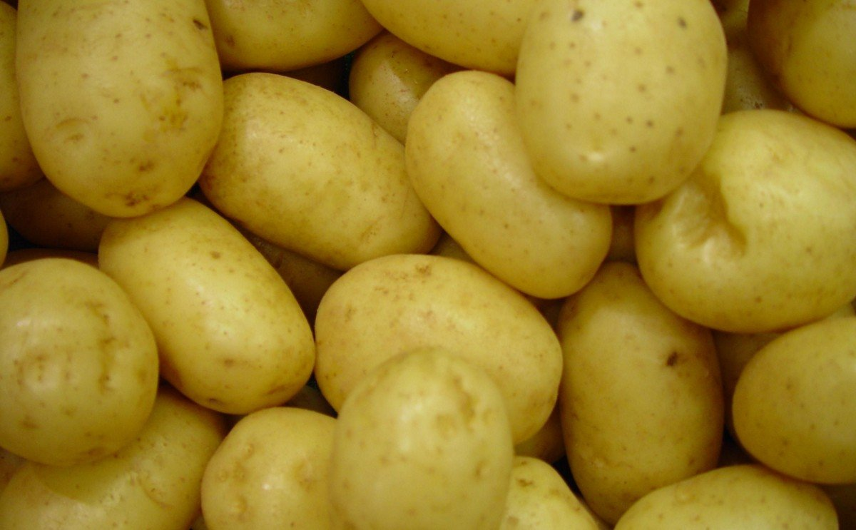 October – December retail potato sales in the US show continued growth