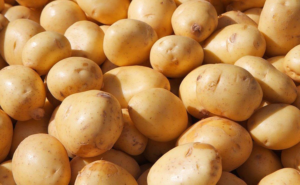 Europa: Autorregular el mercado de la patata podría generar perturbaciones negativas