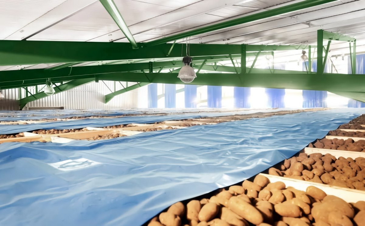 PJ Lee & Sons pleased with new storage for processing potatoes destined for chip shops