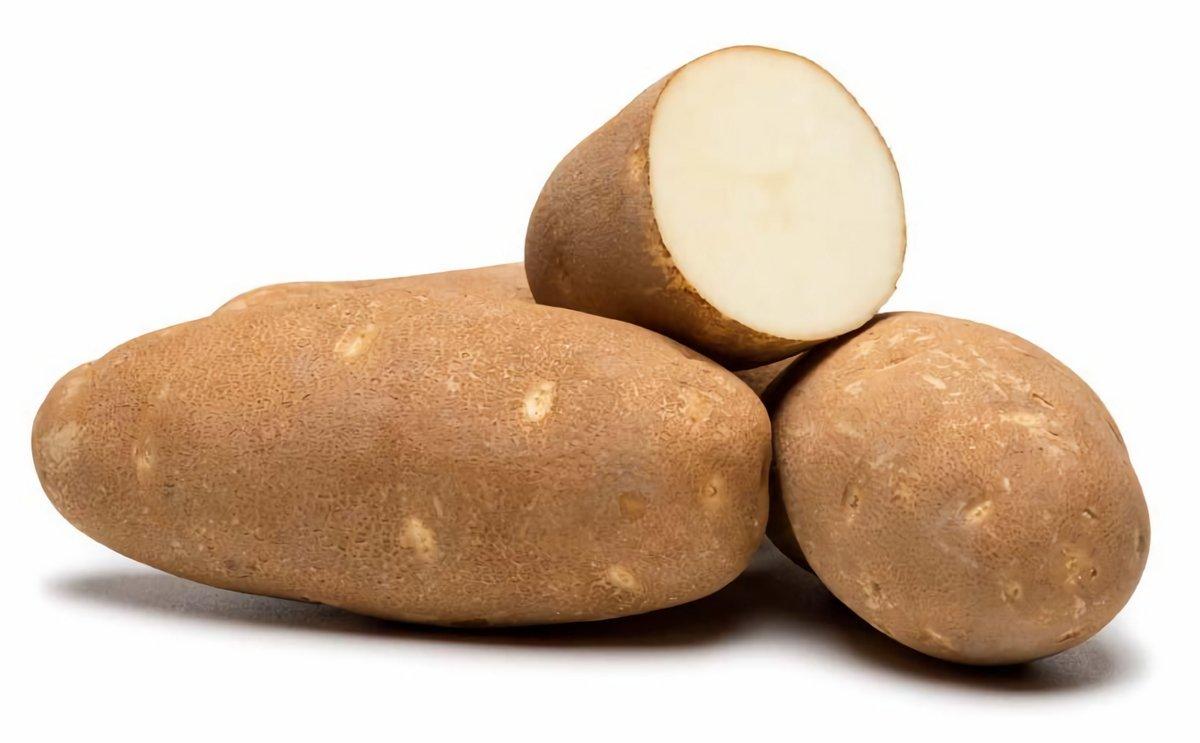 Increasing International interest in PVMI Potato Varieties