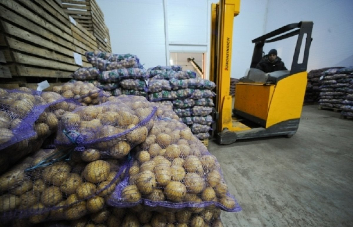 potato bags pallets russia ukraine