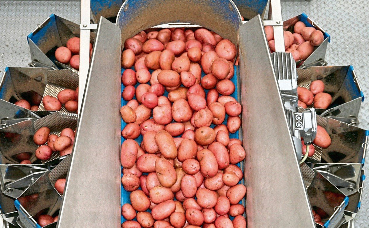 Potato giant Albert Bartlett bags profits rise