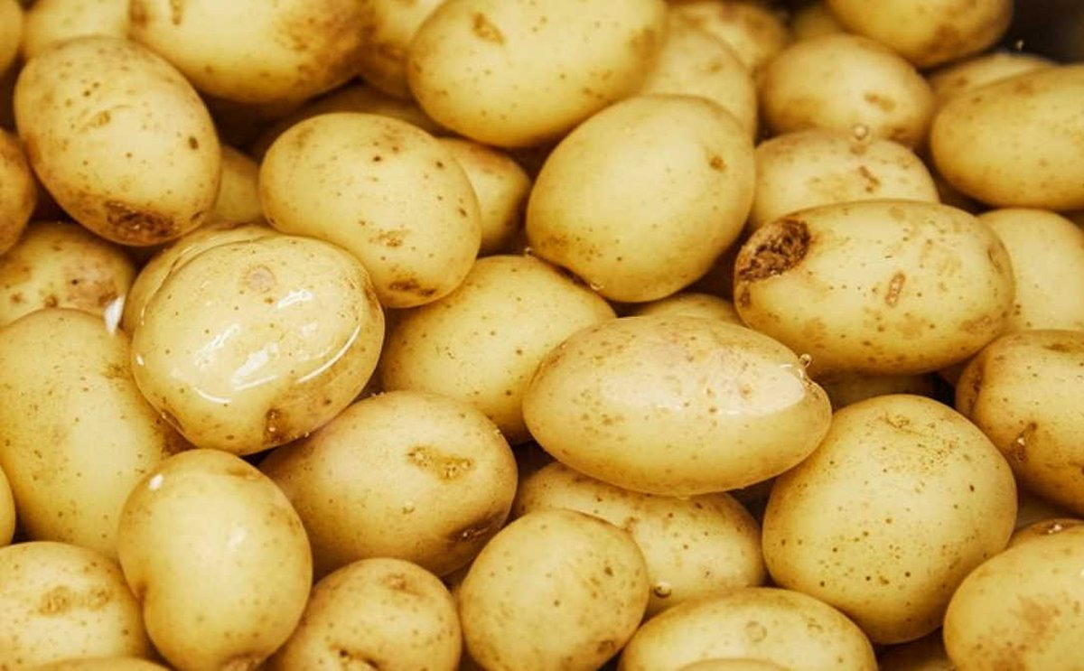 Potatoes NZ request Emergency Measures to ban EU imports