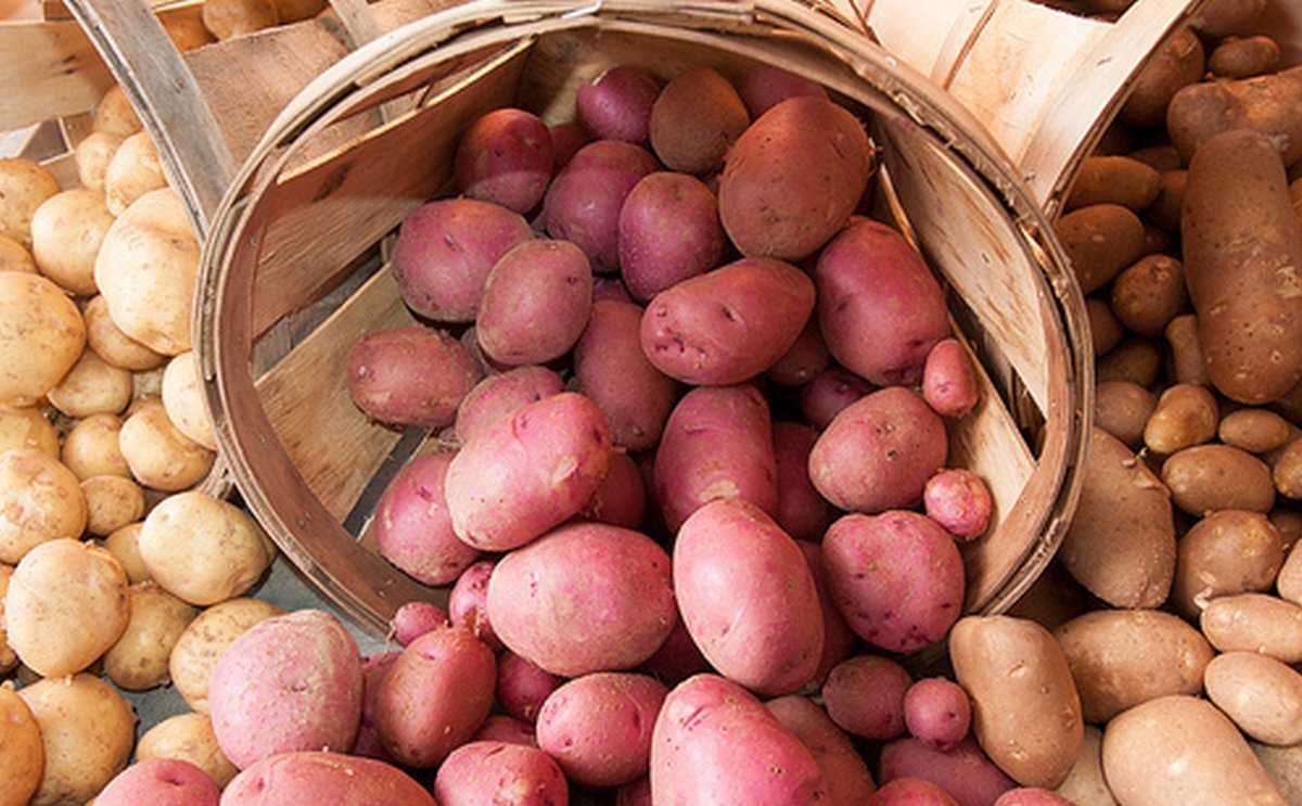 United States Retail Potato sales exceed 5-year records