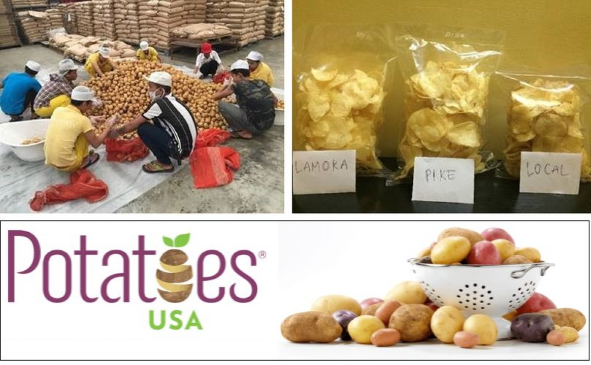 Myanmar Chip Processors Prefer Chipping Potatoes from the United States