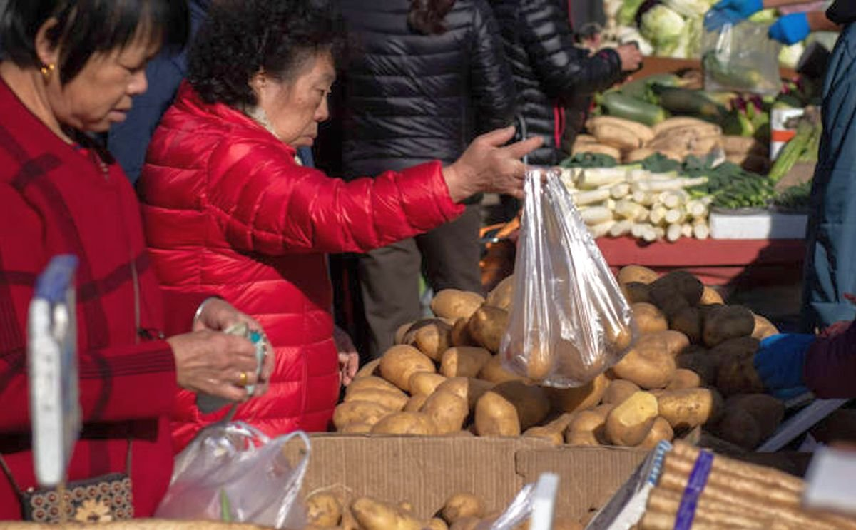 Price of new Chinese potatoes continues to fall