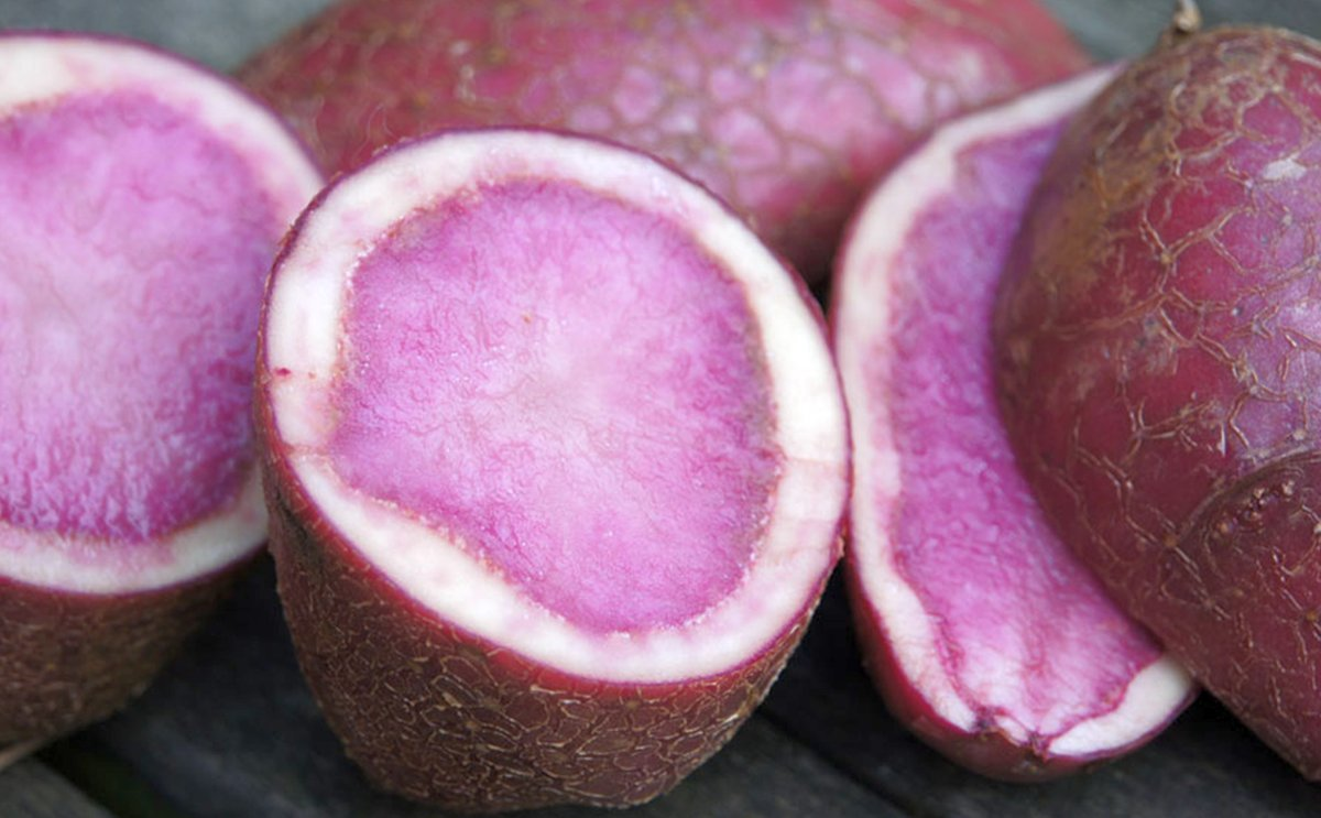 Red potato pulp: an innovative ingredient for gluten-free bread