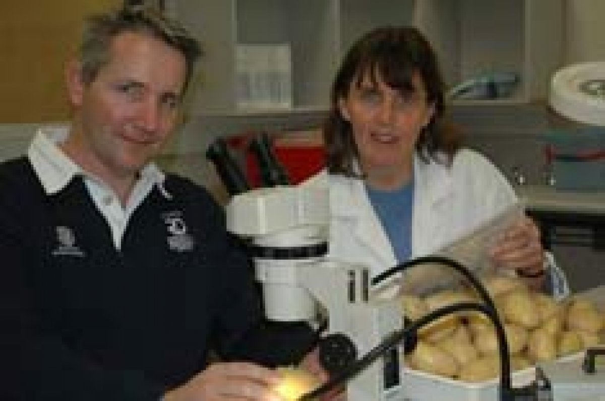 SARDI Plant and Soil Health Scientists Robin Harding and Kathy Ophel Keller worked to develop the DNA diagnostic diseases for potatoes