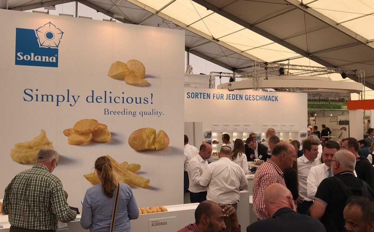 New potato variety Lea is suitable for both conventional and organic farming