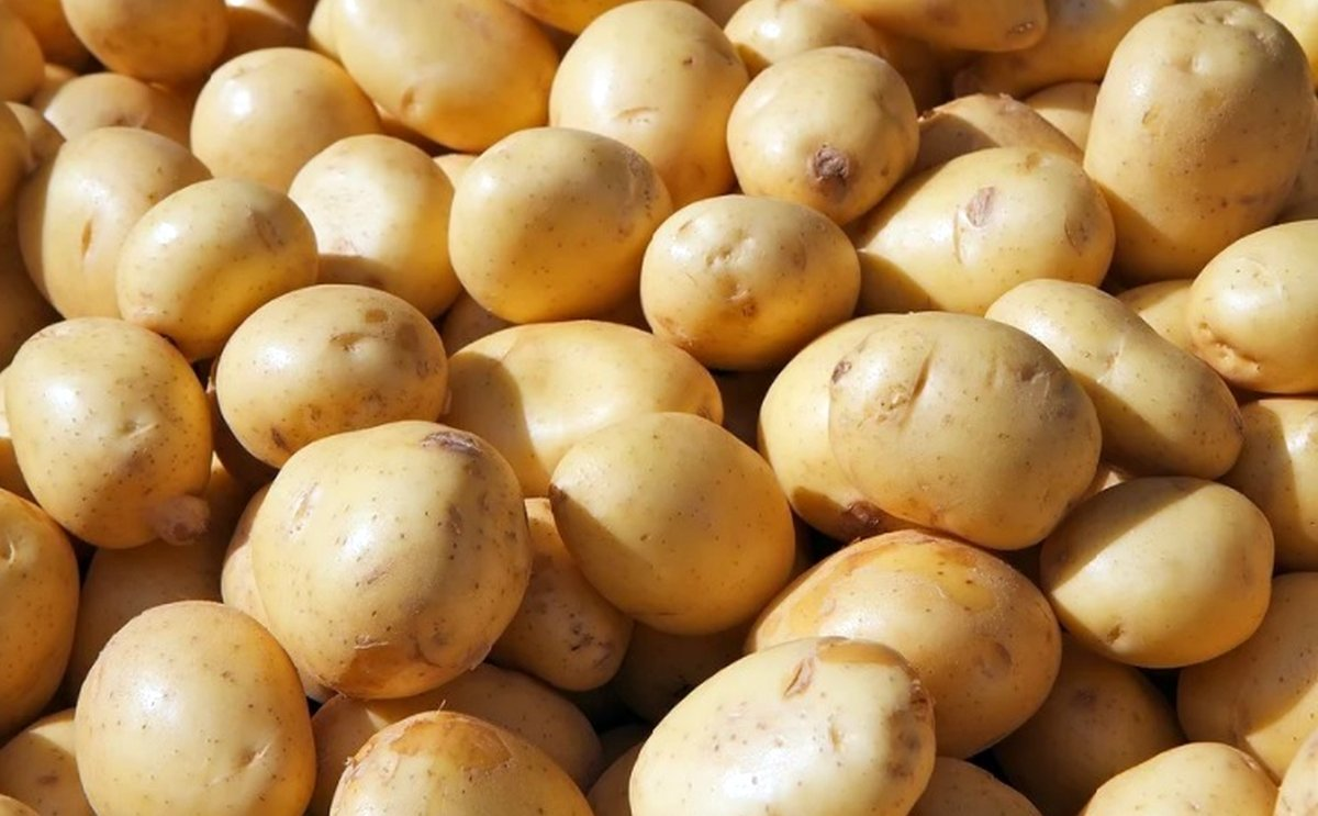 South Africa Has Seen a Massive Surge in Potato Prices in Recent Months