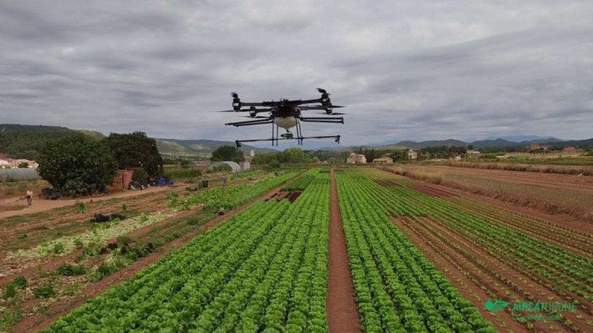 Telefónica Colombia y FAO presentan piloto 'Smart Agro'