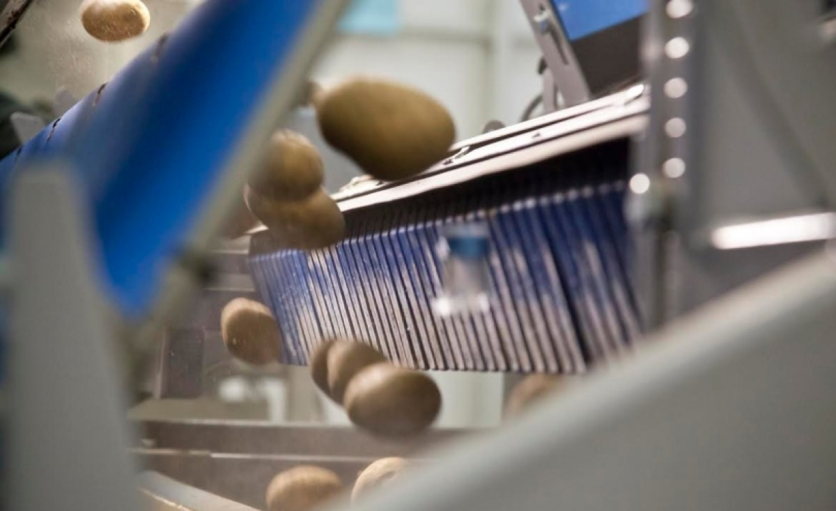 Advancements in automation and robotics are driving improvements in food manufacturing and processing