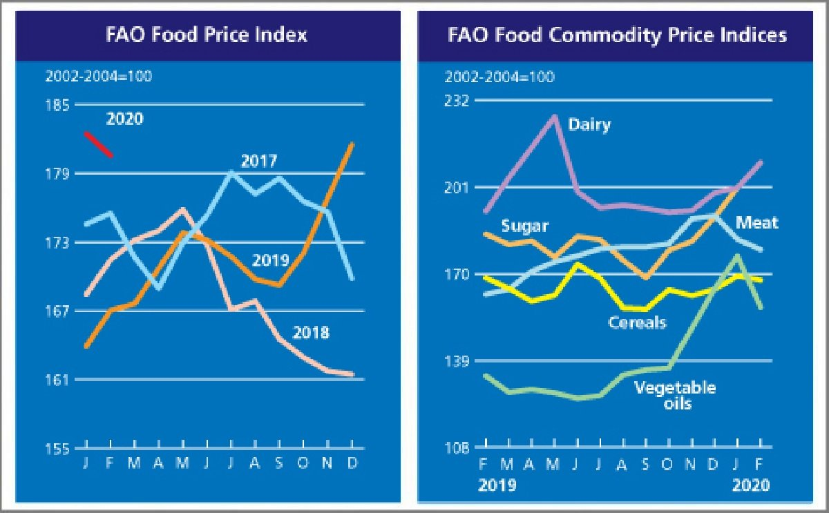 FAO Food Price Index declined in February