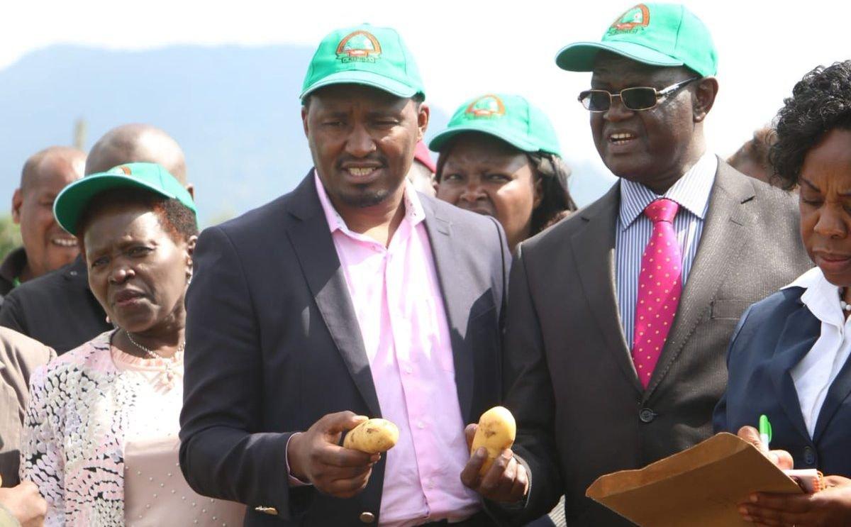 Restaurants in Kenya face acute shortage of potatoes