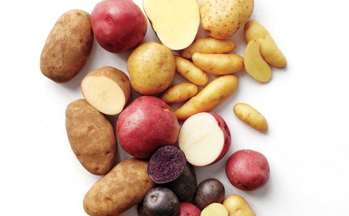 Wageningen University & Research (WUR) studies wild potatoes for new pest-free potato varieties