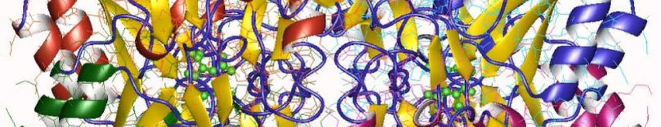 Asparaginase