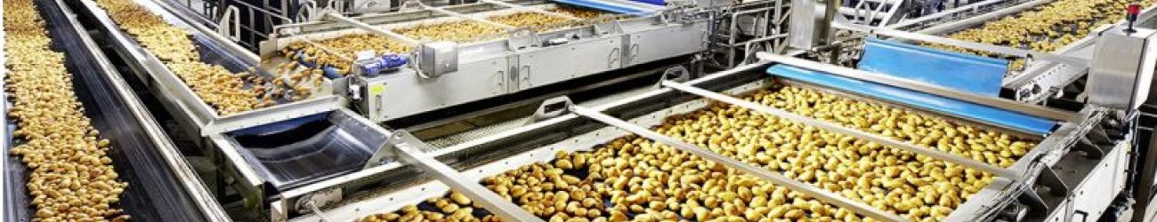Turnkey lines for Potatoes