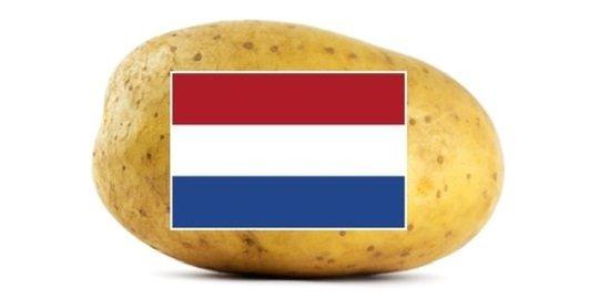 Potato Variety Presentation Days in The Netherlands 2020