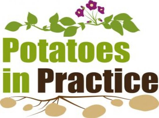 Potatoes in Practice 2017