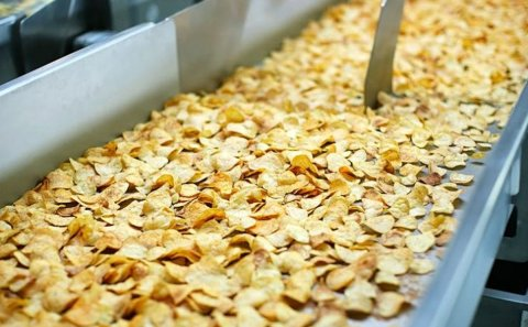 More than 64 thousand tons of potatoes processed in the Moscow region
