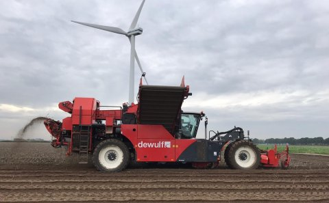 Potato harvest in full swing in North-western Europe; Average Yields expected.