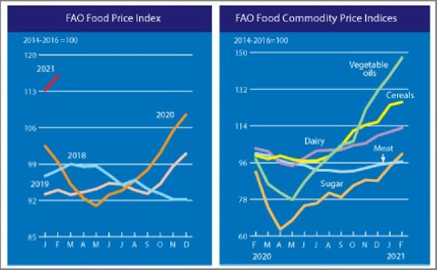 FAO Food Price Index rising for nine straight months