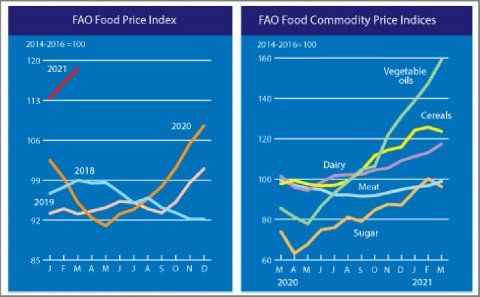 FAO Food Price Index rising for tenth straight month