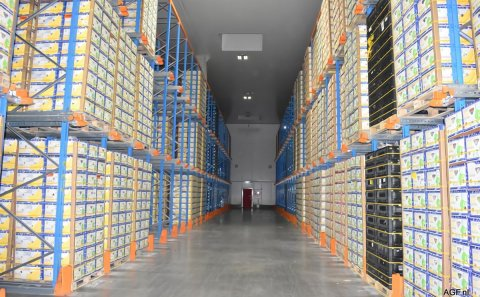 New frozen storage offers 22,000 extra pallet places for frozen produce