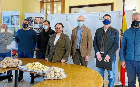 UK regulations relaxed to allow Mallorcan potato exports