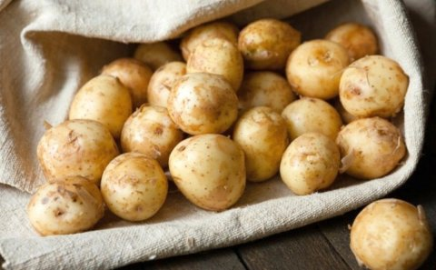 Potato market - Ukraine plans to ban imports from Russia